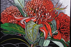Just Waratahs | 85cm w x 65cm h | Sold out