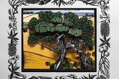 Melaleuca Lanceolata | 46cm w x 42cm h | Sold out
